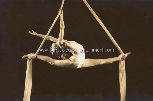 Aerial Acts for Christmas Events